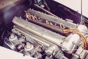Jaguar XK 120 Kaufberatung (1)