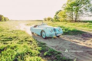 Jaguar XK 120 Kaufberatung (33)