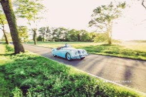 Jaguar XK 120 Kaufberatung (35)