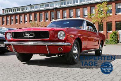 Mustang_4a