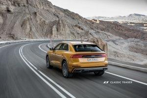 Audi Q8 50 TDI quattro Heck (13)