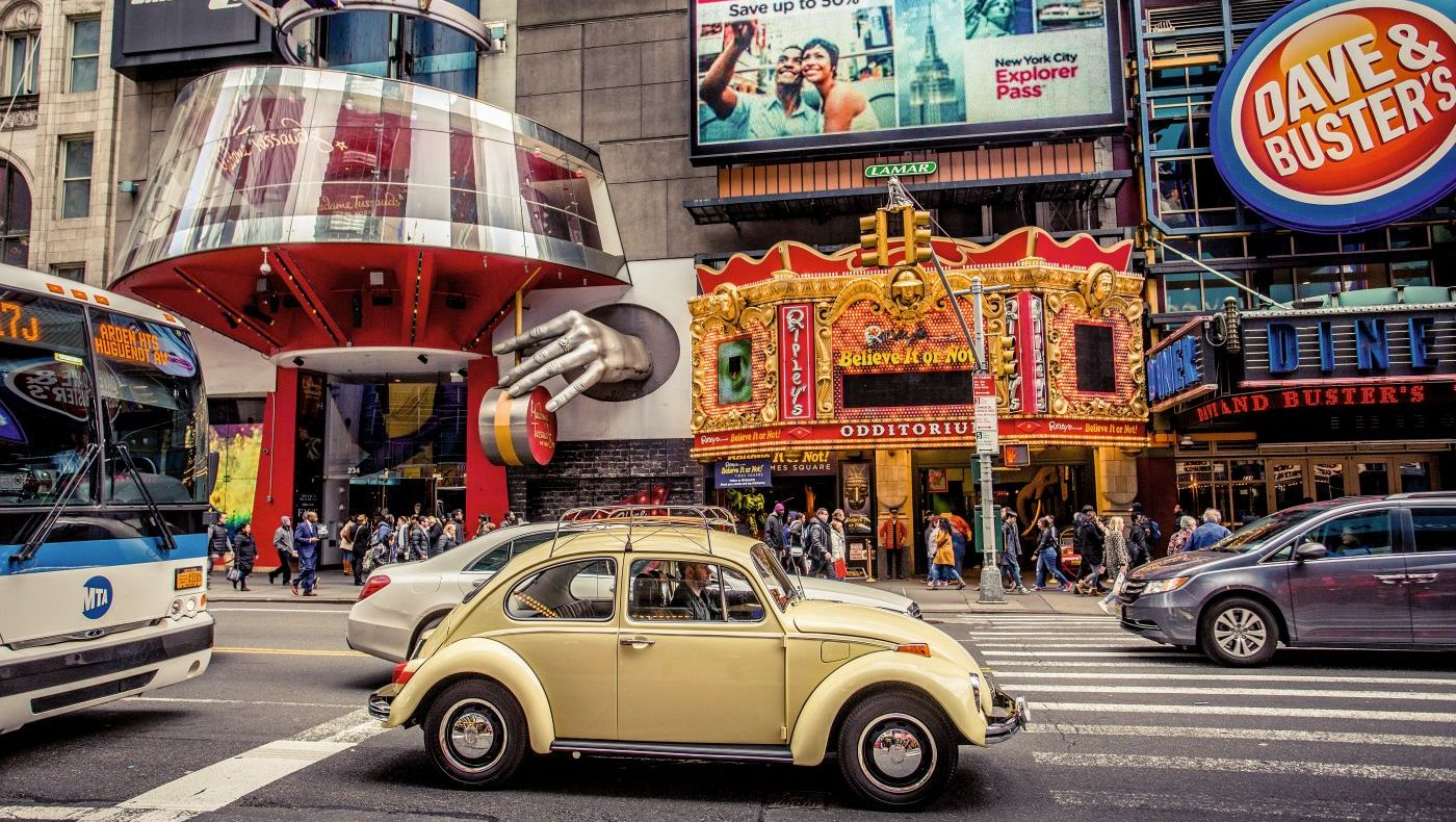 Beetle Love Manhattan Transfer Delius Klasing (6)